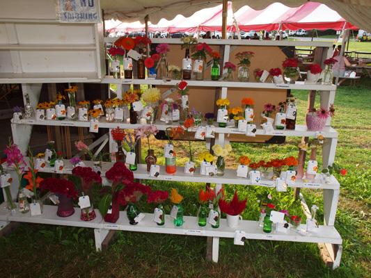 Goshen Country Fair